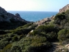 excursions on the island of San Pietro