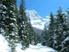 hotel sulle alpi