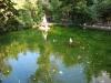 parcchi e spazi verdi e curati a Chieti