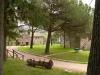 Parco interno dell'Agriturismo