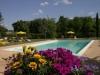 Giardino con piscina e  solarium