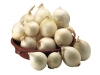 Typical Cannara onions