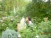elfi in giardino