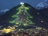 Biggest Christmas Tree in the world