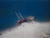 Spiagge da sogno per la vacanza in Calabria
