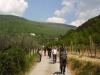 Pellegrinaggio a piedi, Santuari Francescani