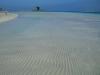 Pelosa beach
