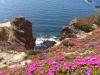 Offerte B&B Sardegna e Isole Carloforte